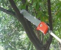 《网红》轻便背负式锄草机 一机2个齿轮箱通用割草机 果树开沟机