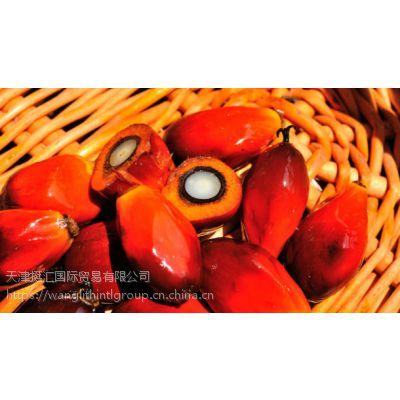 提供进口优质马来西亚脂肪粉