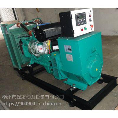 专业OEM250kw康明斯柴油发电机