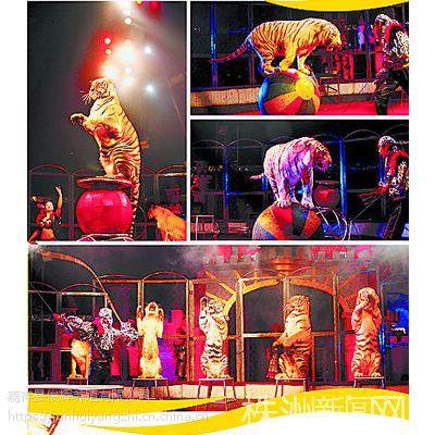 哪里有出租马戏团表演的 马戏团都有什么动物表演出租