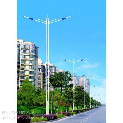 灯、扬州宏野照明(图)、道路灯