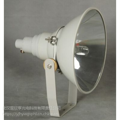 1000W金卤灯投光灯 海洋王NTC9200-J1000防震投光灯