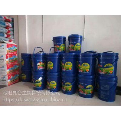 大姜冲施肥微生物菌肥配方 大姜高产专用肥