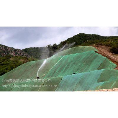 边坡绿化工程施工 客土喷播植草 河南景绣放心之选