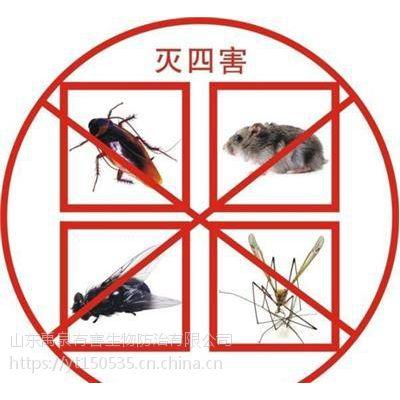 龙口灭老鼠灭蟑螂灭鼠杀蟑螂服务灭虫公司