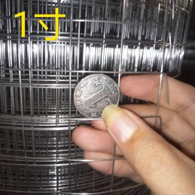 1/2孔径 1mm丝径201不锈钢电焊网