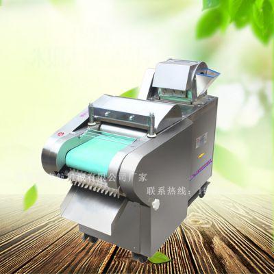赞皇县多功能型黄瓜切片机 启航塑胶履带传送韭菜切段机 鲜豆角切丁机厂家