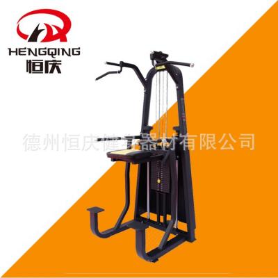 单双杠训练器 商用室内健身器材 健身房健身器械 可定制颜色 恒庆健身器材