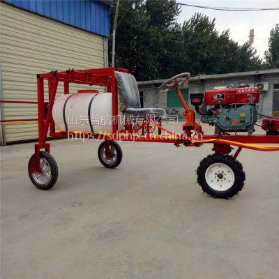 普航 大马力喷雾器 新型家用打药机 200升汽油打药机厂家