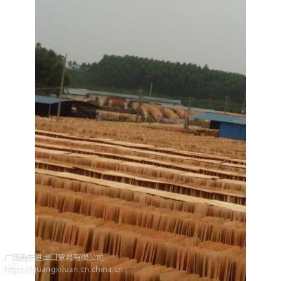 广西鲁安常年销售生产优质的桉木单板,质量保证,欢迎前来选购