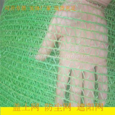 环境绿化2针防尘网 裸露地面覆盖网 湖南工地盖土网