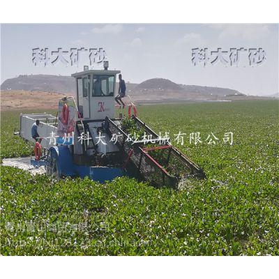 南宁青秀区清剿水葫芦、水葫芦收割运输设备
