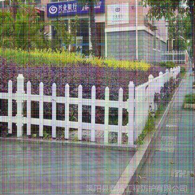 浙江金华婺城塑钢护栏价格 低矮花坛护栏 pvc护栏批发