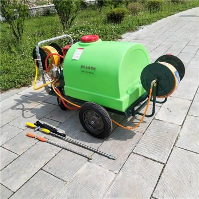 大压力汽油除虫迷雾打药机 道路小区远射程清洗机 菜园杀虫喷雾器热销产品