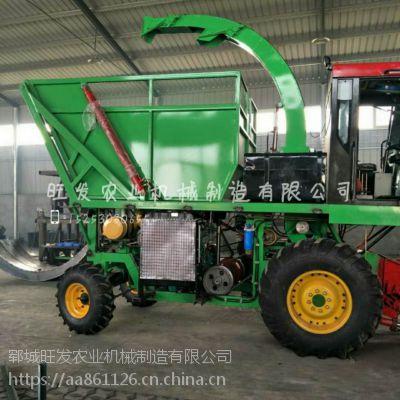 玉米秸秆收割机黑麦草收割粉碎一体机秸秆饲料青储机