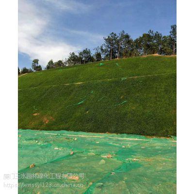 成都三水园林供应园林绿化草种边坡撒播保湿环保无纺布