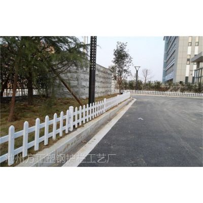 三门峡市绿化栅栏-pvc围栏-放心产品才好用