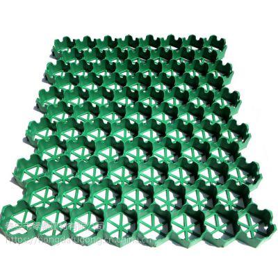 山东塑料植草格5公分植草格