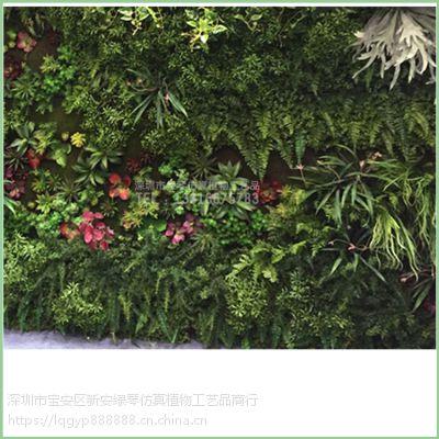 深圳绿琴厂家批发仿真植物墙绿植墙 人造假花假树叶 金钱草尤加利绢花 酒店展厅装饰美化