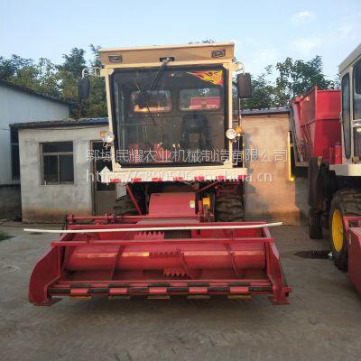 多型号玉米秸秆青储机 自走式皇竹草粉碎收割机 秸秆揉丝青贮机