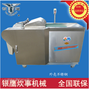 银鹰牌YQC-2000A多用切菜机