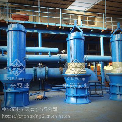 排涝泵站大口径轴流泵