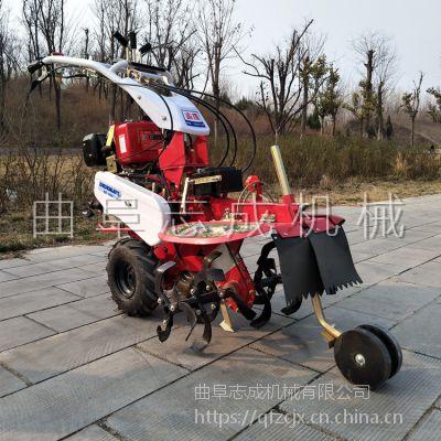 家用果园除草耕田机 手扶式微型土地培土开沟机 志成汽油柴油埋藤机