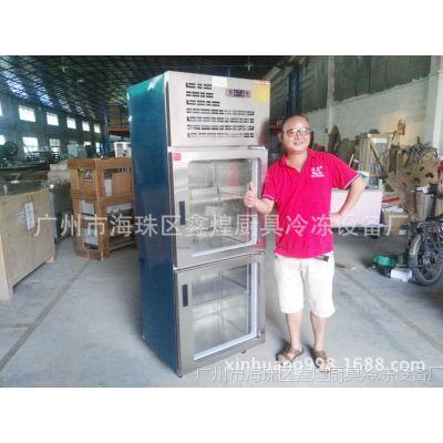 冰友牌厂家直销双门冷柜冷藏柜冰柜带玻璃门