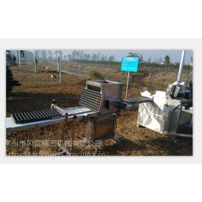 穴盘育苗播种机 蔬菜育苗生产线 穴盘播种机-常州风雷精机
