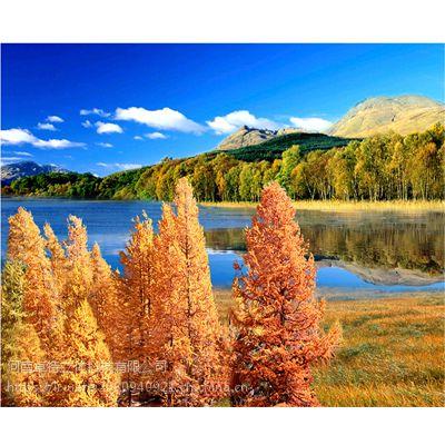 装饰画中国风古典风景公园石林水乡桂林山水图3D三维立体画