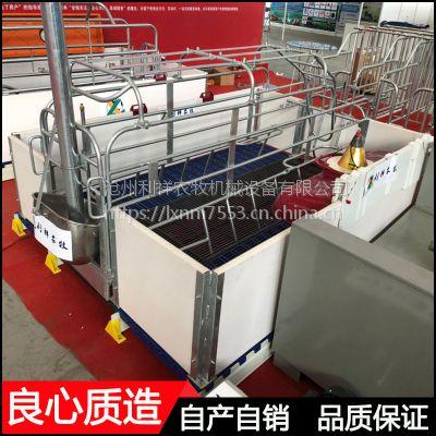 实心母猪产床圆钢材质焊接养母猪管理生产猪床