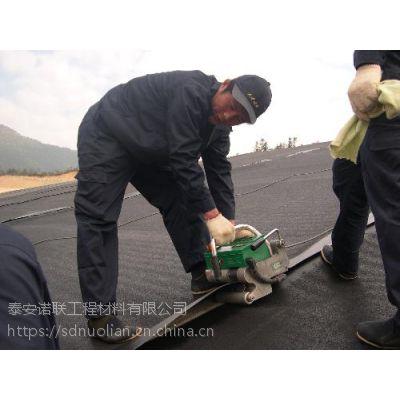 垃圾填埋场专用0.4mm厚土工膜糙面光面土工膜【泰安诺联】均可供应