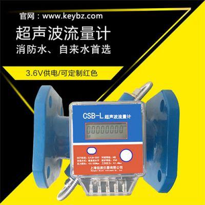 高精度CSB-L管道式超声波流量计_上海佰质仪器