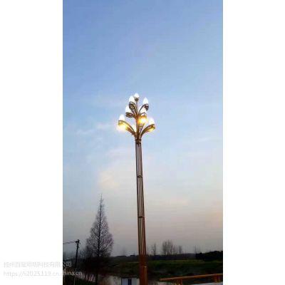 四川自贡异型玉兰灯7米40瓦太阳能路灯大型工程案例