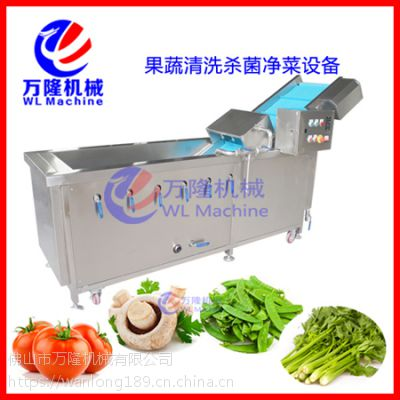 喷淋式清洗机 自动洗菜机 洗果机 全自动叶菜类臭氧清洗设备