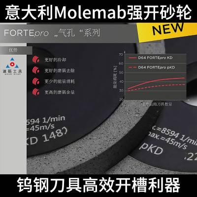 意大利Molemab 1A1D100-T10-X10-H20德克五轴工具磨强力开槽金刚石砂轮