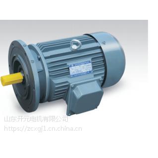 山东开元电机有限公司YVP112M-2-4KW变频电动机