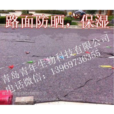 养护无纺布毛毡-混凝土养生毯-公路养护布毛毡13969736355大棚毛毡毯保温被-土工布防渗土工膜