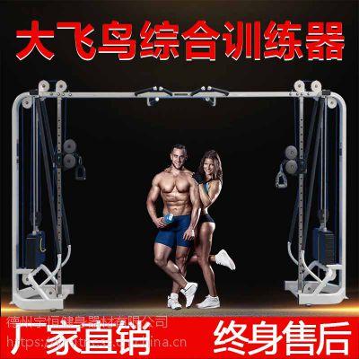 大飞鸟综合训练器家用拉力龙门架力量训练套装组合多功能健身器材