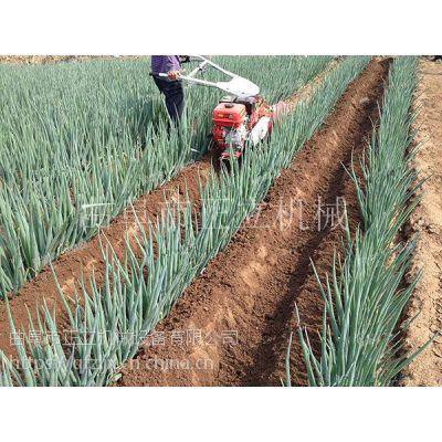 正立厂家直供大葱封葱机 大豆种植开沟起垄机 农用小型家用开沟机