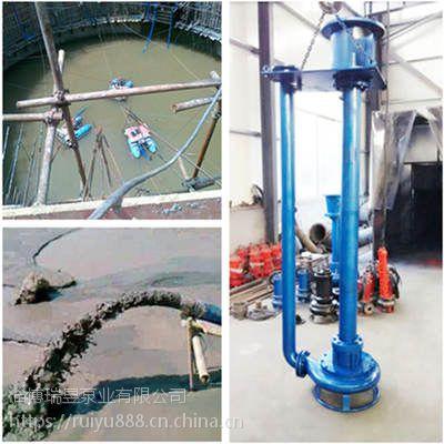 中国泵城直供-立式搅拌河道清淤泵,耐磨液下抽砂泵,立式渣浆泵,工况专用泵
