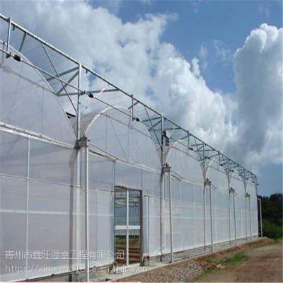 连栋薄膜温室大棚建设工程生产厂家