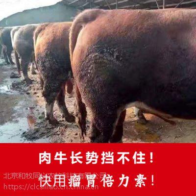 育肥牛催肥剂 肉牛催肥专用饲料添加剂