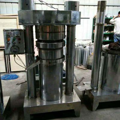 实力厂家直供 橄榄油榨油机 韩式香油机 芝麻专用液压榨油机
