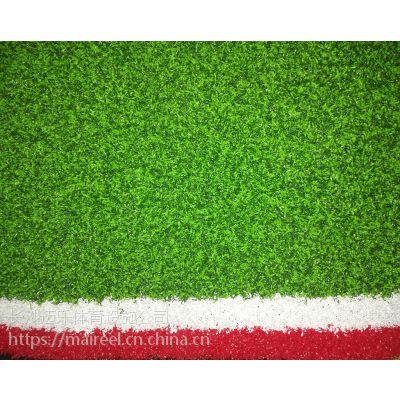 供应湖南张家界门球场专用人造草坪,高档双色宽草,门球场指定用草