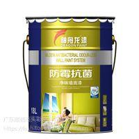 净味乳胶漆 防霉防潮抗菌墙面漆