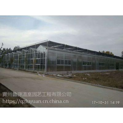 河北廊坊冬季保温好阳光板温室大棚8mm中空外墙、12米开跨型建造报价