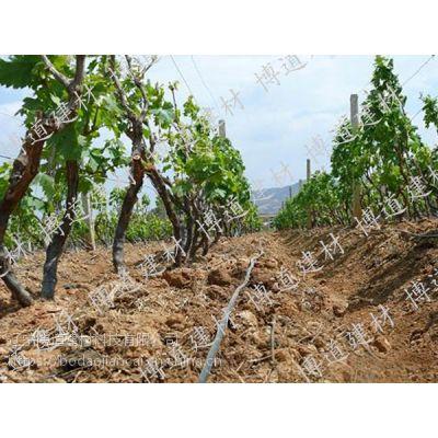 HDPE农田灌溉管厂家_农业灌溉水管
