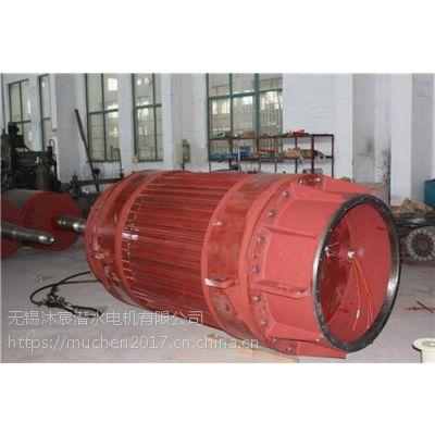 潜水电机,无锡沐宸潜水电机公司,潜水电机在哪买