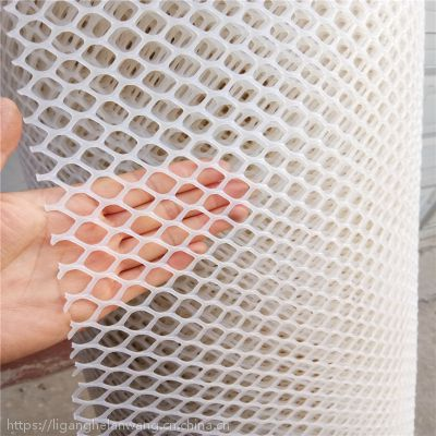 加厚塑料平网养殖围栏网阳台防护网家用养鸡隔离网养蜂网